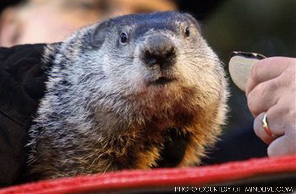 On Groundhog Day, Punxsutawney Phil, a highly respected member of American society, makes his prediction for the upcoming spring. Although he is only right 39% of the time, when the groundhog speaks, we listen.