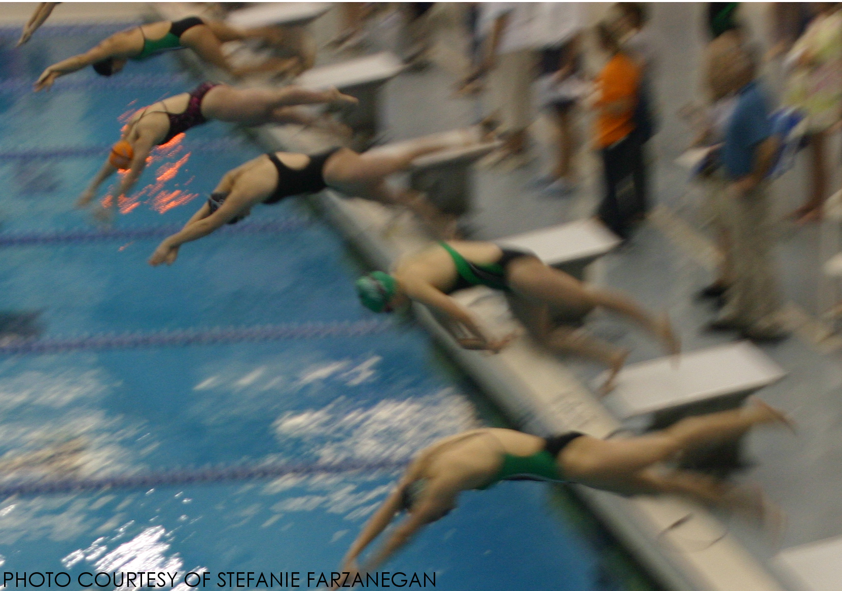 Swimmers launch themselves into the pool during the swim meet on December 4.  Swimmers are disqualified if they leave the wall before the starting signal.