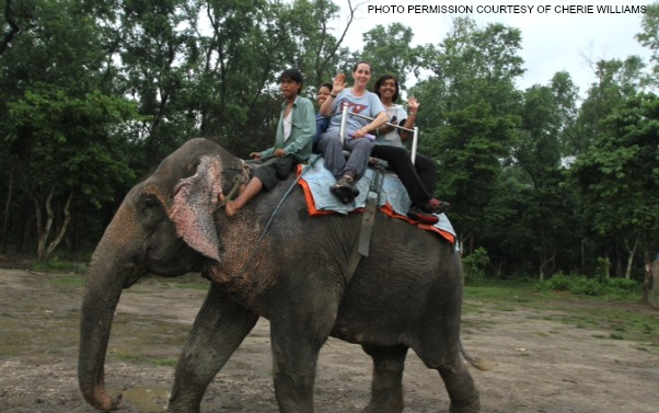 During Ms. Williams' spare time in India, she had the opportunity to ride an elephant. The Indian elephant is one of the three subspecies of the Asian elephants.