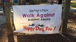 The Saving Grace walk against animal abuse was held at Lake Lynn. All profits from the walk proceed directly to Saving Grace Animals for Adoption.