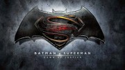 Batman v. Superman: Dawn of Justice premiered on March 25. The movie topped the box office its opening weekend, but its success began to slack off during its second weekend.