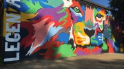 The senior wall features several bright colors that make up the face of the lion, our school's mascot. The painters of the wall spent several weeks working diligently on perfecting the class of 2017 wall.
