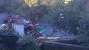 In the aftermath of Hurricane Matthew, a fallen tree damages property in Raleigh. All schools in Wake County were closed on Monday, October 10 due to the storm.