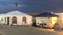 Stationed in Fort Worth, Texas, one of AKC Reunite's trailers is working diligently to help people, and their pets, stranded by Hurricane Harvey. Tents situated alongside the trailer have kennels and other pets supplies inside that are usable for the public. (Photo used by permission of AKC Reunite)