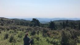 natalie_gore_mountain_