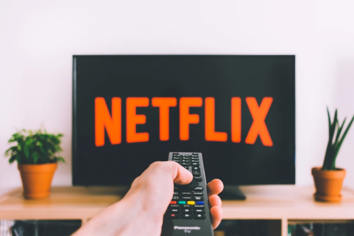 Netflix Suggestions For Your Quarantine