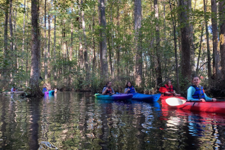 Robertson Millpond Preserve: A Hidden Treasure In Our Own Backyards