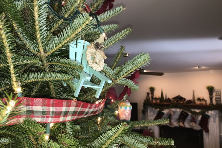 Bringing the Christmas Spirit
