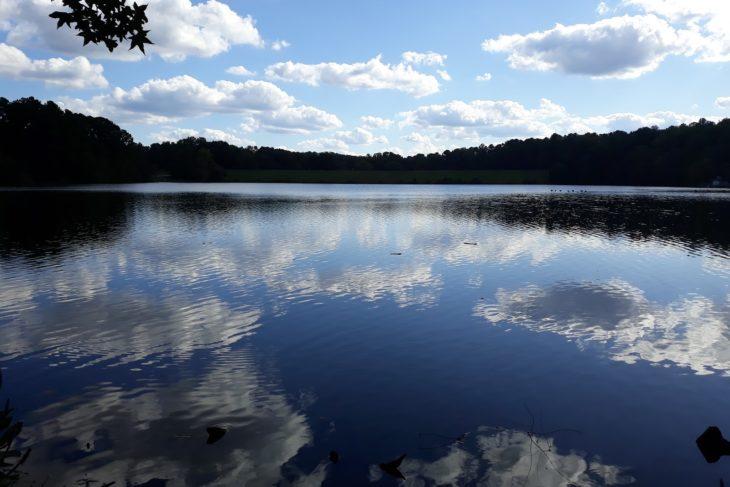 A Day at Shelley Lake