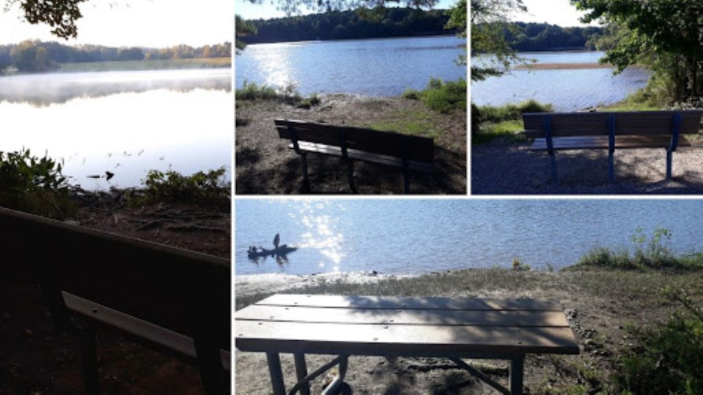 Sporadically placed around Shelley Lake are benches and tables. Each one provides a quiet place to sit and relax.